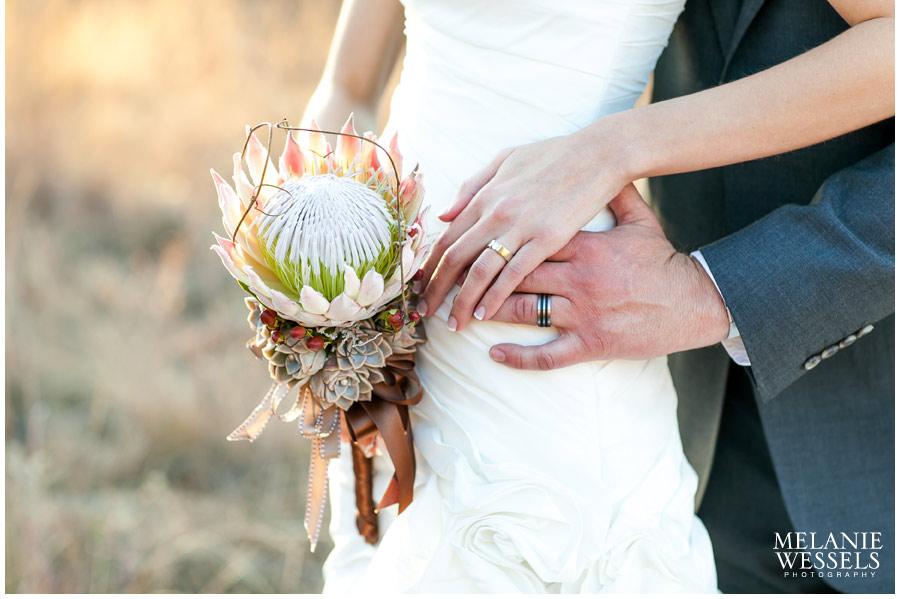King Protea wedding photographer